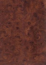176 korzeń brązowy